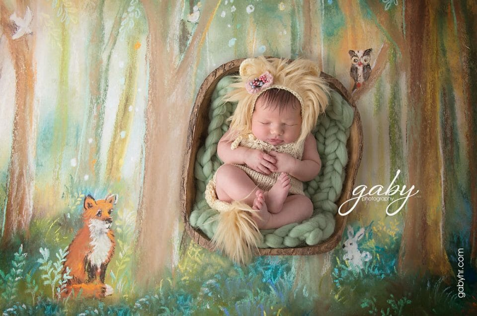 Celebrate your own lion cub's 🦁arrival with a baby photoshoot